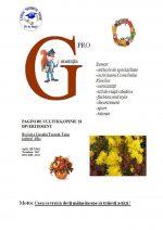 Ziarul Generatia Pro - noiembrie 2011
