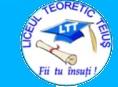 Liceul Teoretic Teiuș